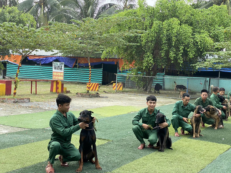 Trường huấn luyện chó cảnh chuyên nghiệp Trung Đức